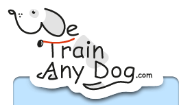 we train any dog logo